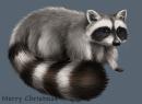It's a raccoon