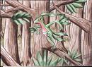 Reptain im tiefen Dschungel