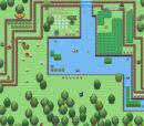 Random Map~
