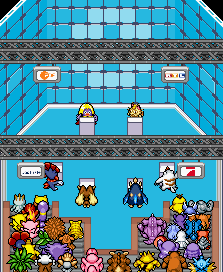 Pokémon-Map: Das Duell