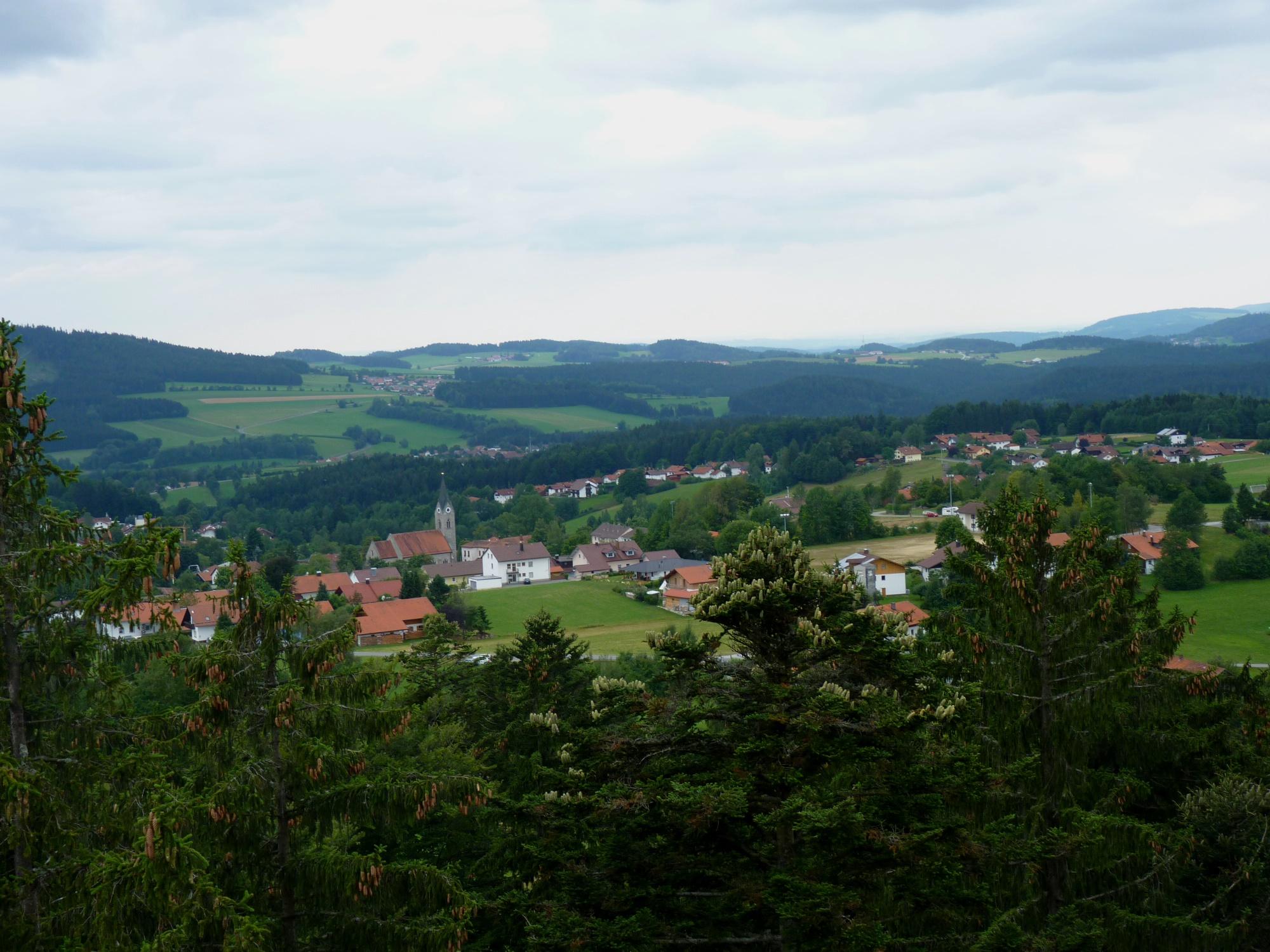 Foto: Foto der Woche #014: Bayerwald