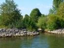Foto der Woche #015: Donauufer