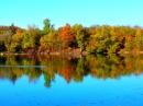 Foto der Woche #026: Herbstliches Seeufer