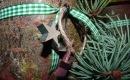 Foto der Woche #029: Holz im Kranz