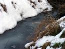 Foto der Woche #032: Schnee??? Wo???