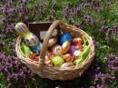Foto der Woche #044: Frohe Ostern, Pokefans!