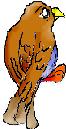 Falcos