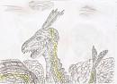 Rayquaza drache