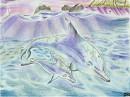 Delphin und Baby