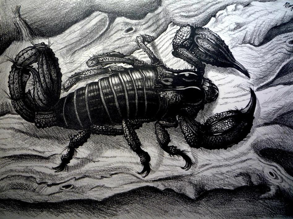 Pokémon-Zeichnung: Skorpion