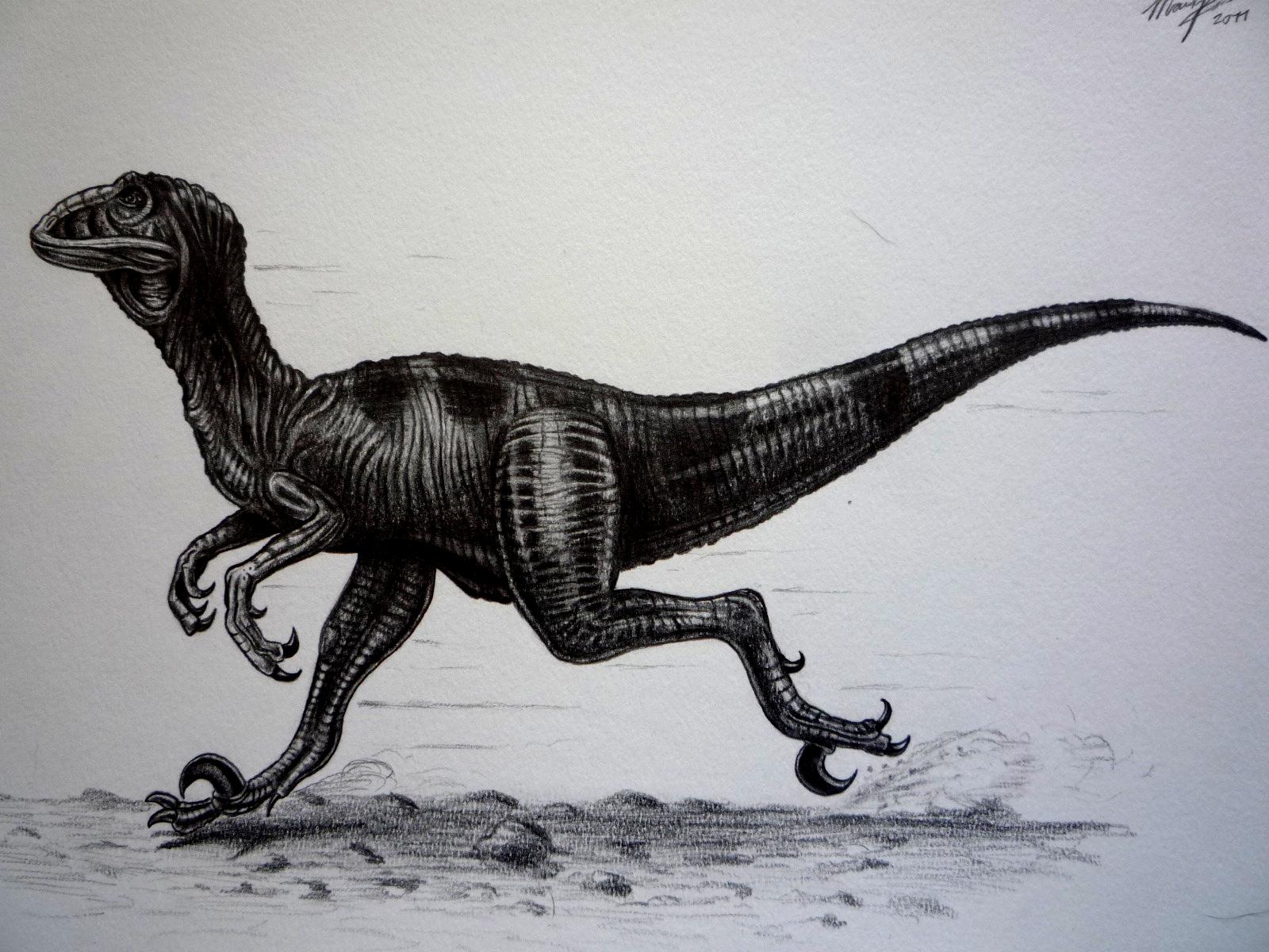 Pokémon-Zeichnung: Deinonychus