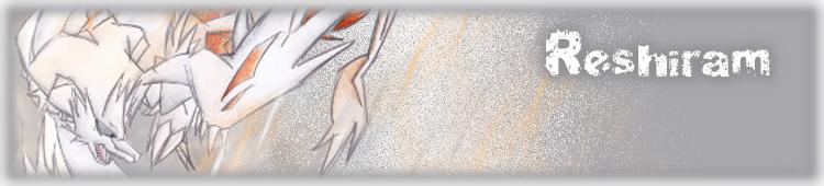 Pokémon-Fanart: Banner mit Reshi