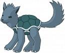 Hunde-Schildkröte