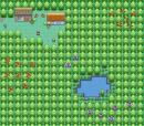 Ein furchtbar langweiliger Wald