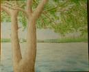 Sexy Baum