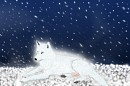 Wolf <3 Ich liebe Wölfe :3