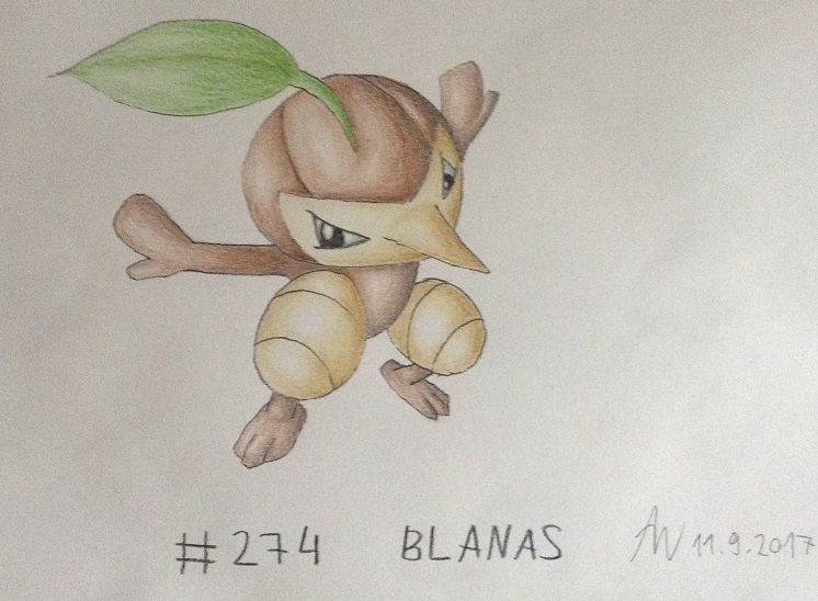 Pokémon-Zeichnung: #274 - Blanas