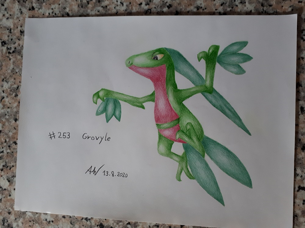 Pokémon-Zeichnung: Reptain
