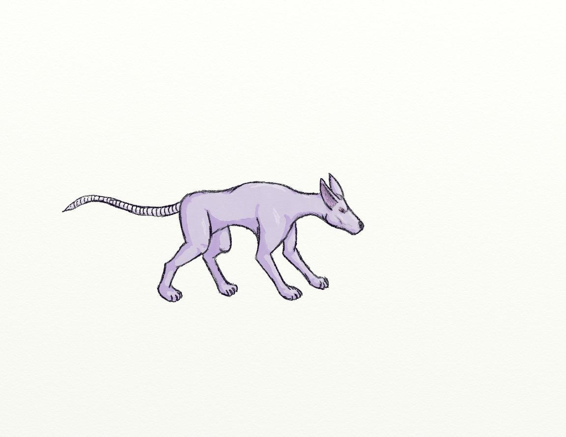 Pokémon-Zeichnung: Ratten Hunde ding