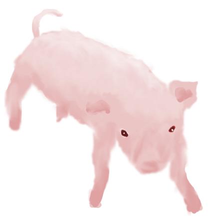 Pokémon-Zeichnung: Hundi :3...Oder Schweini xD