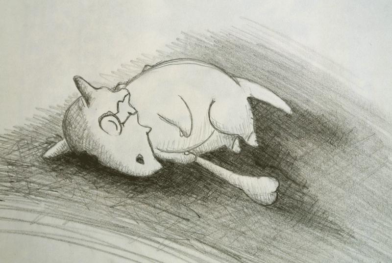 Pokémon-Zeichnung: Schlafendes Tragosso
