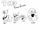 PMD team anima