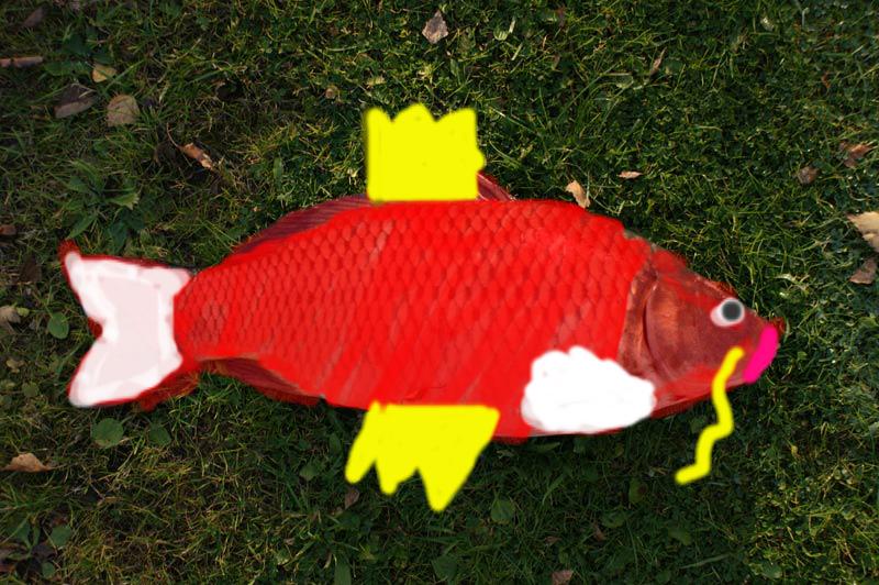 Pokémon-Fanart: Karpadortastisch!