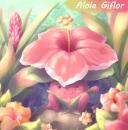 Alola Giflor
