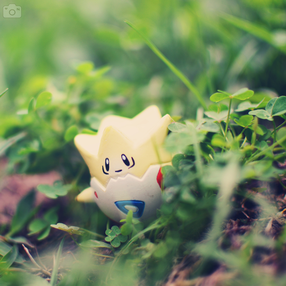 Foto: Togepi being curious