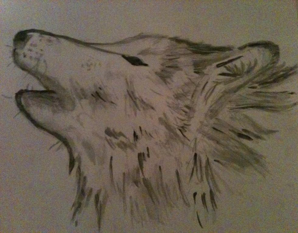 Pokémon-Zeichnung: Wolf x)