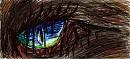 Auge eines .....