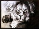 Löwen-Zeichnung