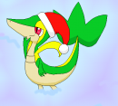Weihnachtsmützenserpifeu