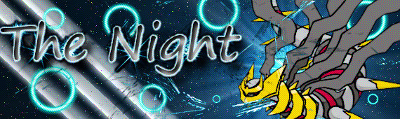 Pokémon-Fanart: The Night