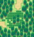 Pokémon BW2 Testmap V1