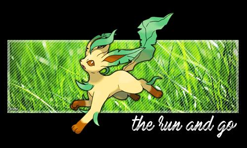 Pokémon-Fanart: the run and go