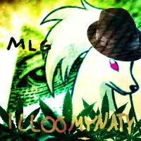 Pokémon-Fanart: MLG Vulnona-Avatar für mein Steam-Profil