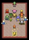 Mystery Dungeon Team Rot Minitendo