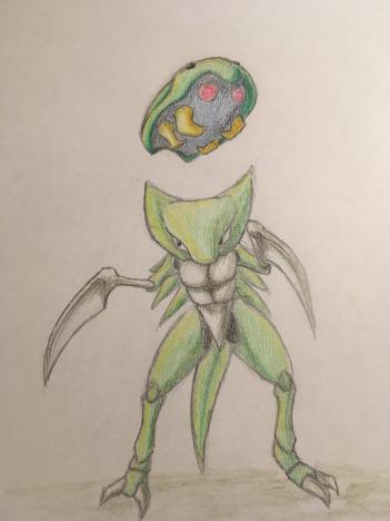 Pokémon-Zeichnung: Kabuto und Kabutops Schillernd durch die Welt