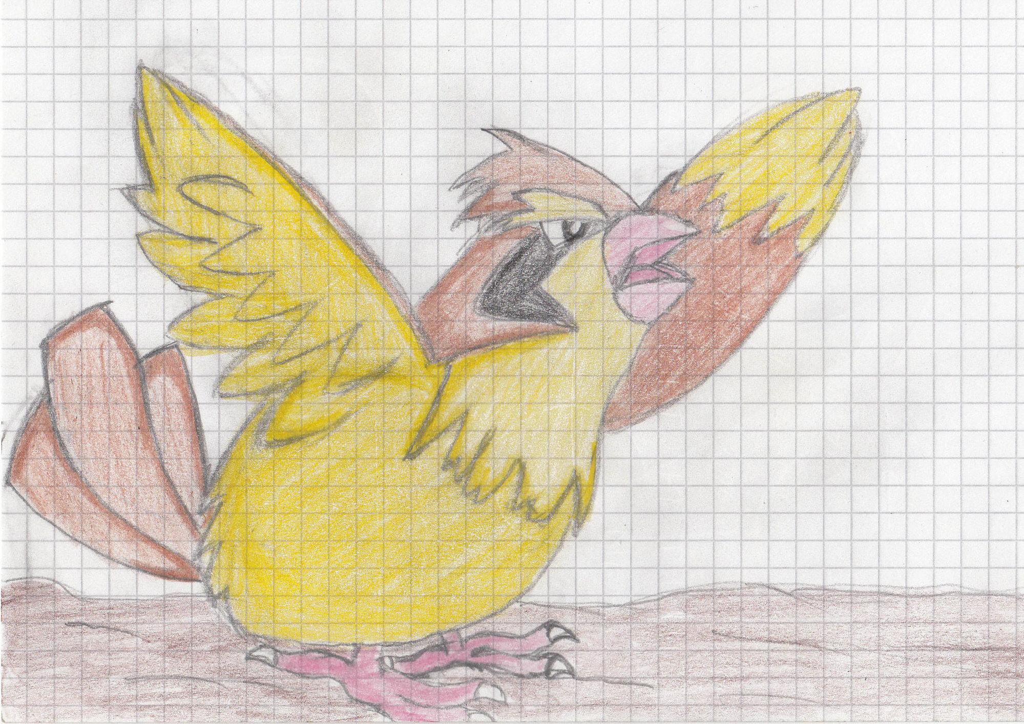 Pokémon-Zeichnung: Pidgeot