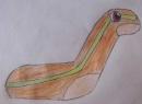 Sockkid - das Sockenpokémon