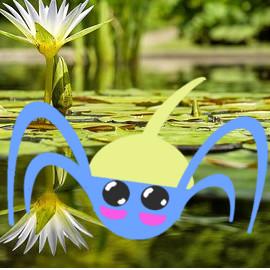Pokémon-Zeichnung: Was für ein Pokémon bist du?