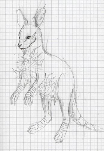 Pokémon-Zeichnung: EdP-Känguru