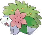 Legendäres Pokémon Shaymin
