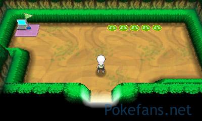 https://files.pokefans.net/images/rs2/screenshot/269.jpg