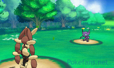 http://files.pokefans.net/images/rs2/screenshot/359.jpg