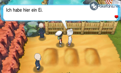 Pokemon-Ei