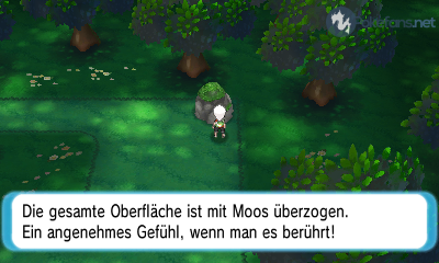 Blütenburgwald