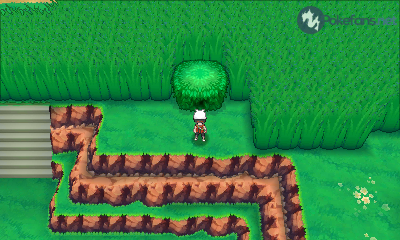 Route 120