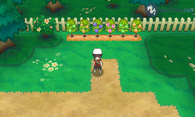 Route 123
